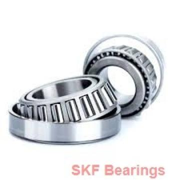 SKF BTHB1866047A tapered roller bearings